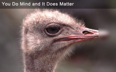 Clutter: You Do Mind and It Does Matter